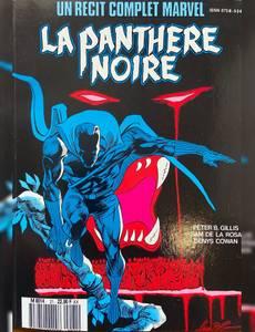 Couverture de l'album la panthere noire
