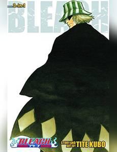 Couverture de l'album Bleach - Hors Série
